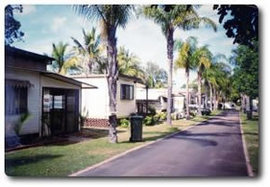 Finemore Tourist Park - Palm Beach Accommodation