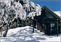 Arlberg Hotel Mt Buller - Palm Beach Accommodation