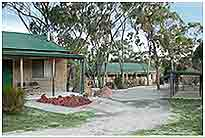 Murray Gardens Motel And Cottages - Palm Beach Accommodation