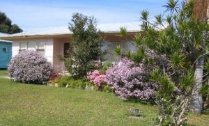 Maeville Cottage - Palm Beach Accommodation