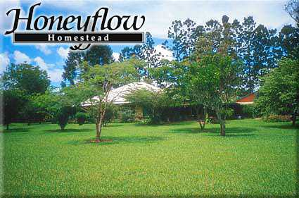 Honeyflow Homestead - Palm Beach Accommodation