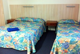 Mango Tree Motel - Palm Beach Accommodation