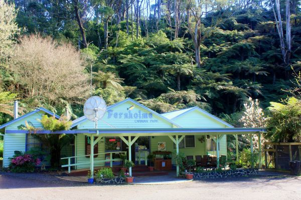 Tarra Valley Caravan Park - Palm Beach Accommodation
