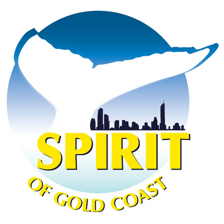 Spirit of Gold Coast Whale Watching - Palm Beach Accommodation