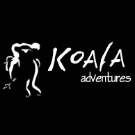 Koala Adventures - Palm Beach Accommodation