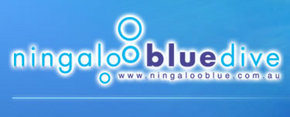 Ningaloo Blue Dive - Palm Beach Accommodation