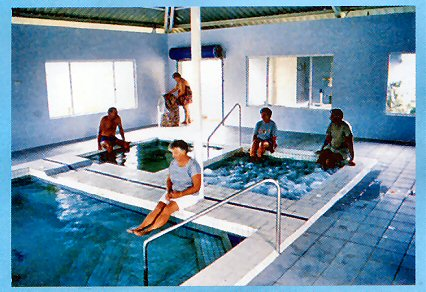Innot Hot Springs Leisure  Health Park - Palm Beach Accommodation