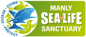 Manly SEA LIFE Sanctuary - Palm Beach Accommodation