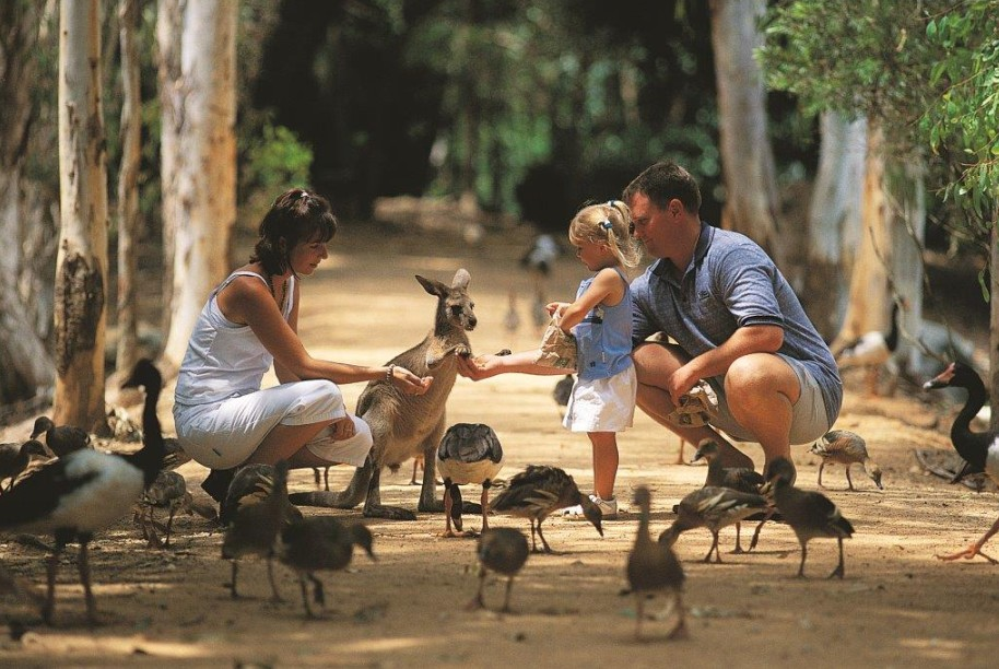 Billabong Sanctuary - Palm Beach Accommodation