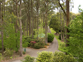 Mount Lofty Botanic Garden - Palm Beach Accommodation