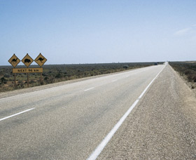 Eyre Highway - Palm Beach Accommodation