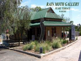 Rain Moth Gallery - Palm Beach Accommodation