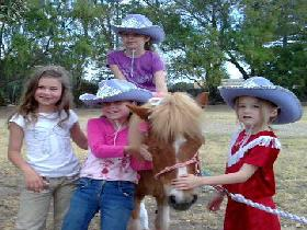 Amberainbow Pony Rides - Palm Beach Accommodation