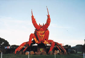 The Big Lobster - Palm Beach Accommodation