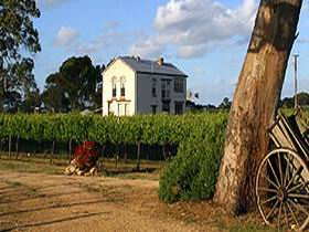 Highbank Vineyards - Palm Beach Accommodation