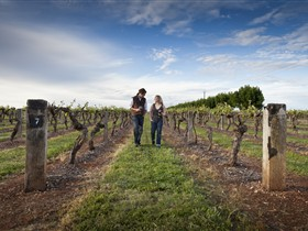 Coonawarra Wineries Walking Trail - Palm Beach Accommodation