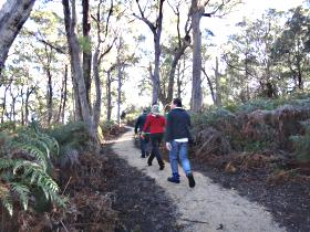 Bridport Walking Track - Palm Beach Accommodation