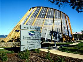 Forest EcoCentre - Palm Beach Accommodation
