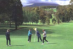 Deloraine Golf Course - Palm Beach Accommodation