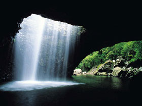Natural Bridge Springbrook National Park - Palm Beach Accommodation