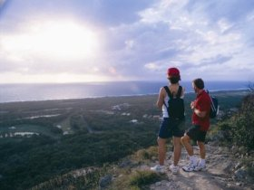 Mount Coolum National Park - Palm Beach Accommodation