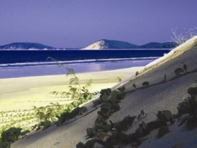 Cooloola Great Sandy National Park - Palm Beach Accommodation