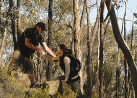 Greater Bendigo National Park - Palm Beach Accommodation