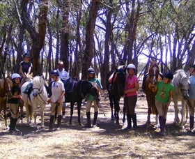 Bellarine Horse Riding Centre - Palm Beach Accommodation