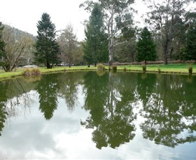Mountain Fresh Trout and Salmon Farm - Palm Beach Accommodation