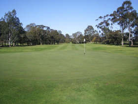 Maffra Golf Club - Palm Beach Accommodation