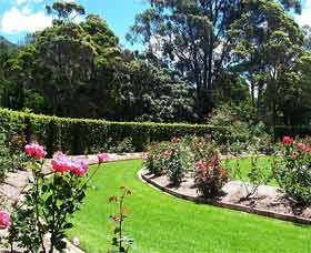 Wollongong Botanic Garden - Palm Beach Accommodation
