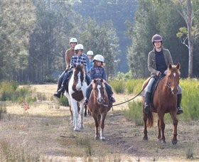 Horse Riding at Oaks Ranch and Country Club - Palm Beach Accommodation