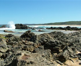Coastal Walks - Bermagui - Palm Beach Accommodation