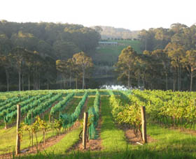 Tilba Valley Wines - Palm Beach Accommodation