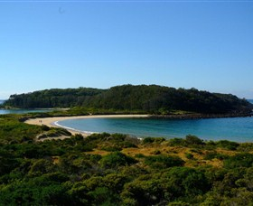 Broulee Island Walk - Palm Beach Accommodation