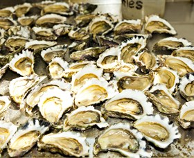 Wheelers Oysters - Palm Beach Accommodation