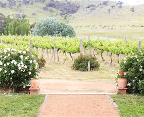 Brindabella Hills Winery - Palm Beach Accommodation