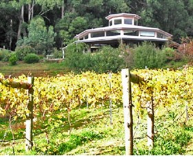 Peveril Vineyard/Beechy Berries - Palm Beach Accommodation