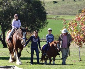 Bathurst Farm Experience - Palm Beach Accommodation