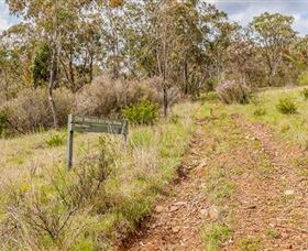 Old Mountain Road Walking Track - Palm Beach Accommodation