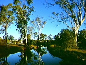 Dingo Creek Park - Palm Beach Accommodation