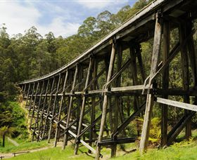 Noojee Trestle Bridge - Palm Beach Accommodation