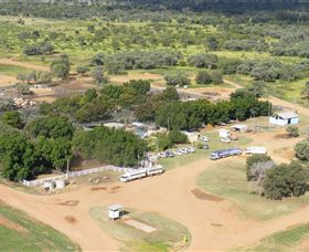 Blackall Saleyards