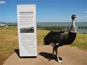 Birdman of the Coorong - Palm Beach Accommodation