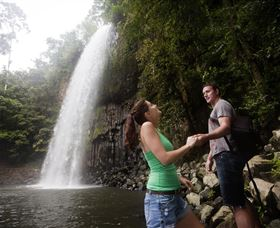 Millaa Millaa Falls - Palm Beach Accommodation