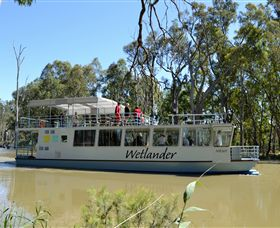 Wetlander Cruises - Palm Beach Accommodation