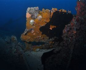 Lady Bowen Dive Site