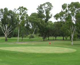 Moree Golf Club - Palm Beach Accommodation