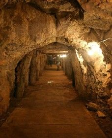Wellington Caves and Phosphate Mine - Palm Beach Accommodation