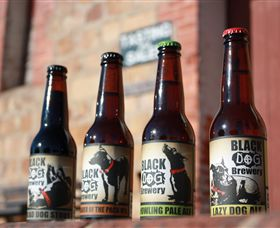 Black Dog Brewery - Palm Beach Accommodation